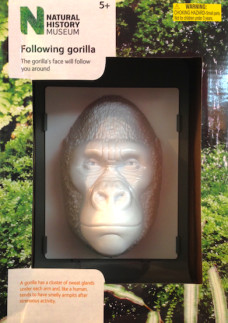 following-gorilla